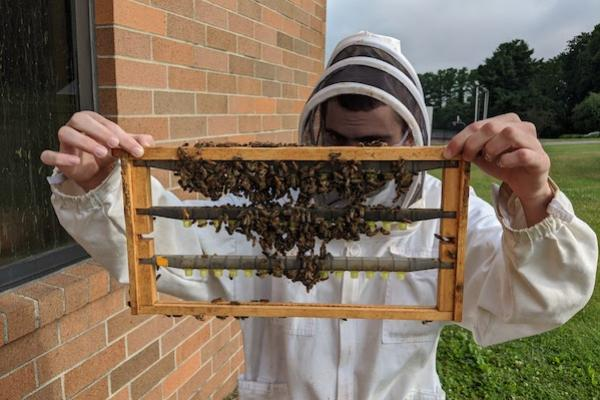 Man in a white beekeeping uniform holding a tray with bees in front of his face