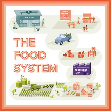 Colorful graphic with seven areas of the food system displayed: retail, community, economics, processing, production, distribution, and environment