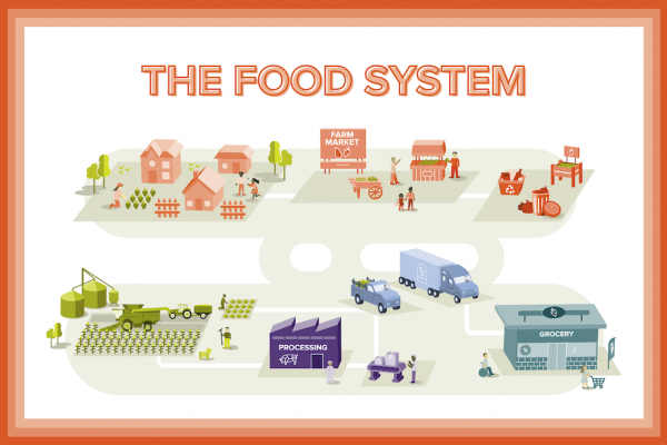 a graphic with representatives from each part of the food system including a truck, processing plants, grocery story, field, houses, and farmers market