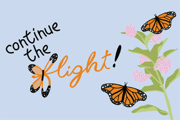 Check out the Continue the Flight event